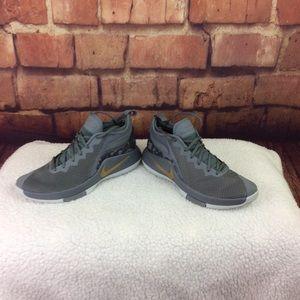 Gray and Gold Nike Zoom LeBron Witness II